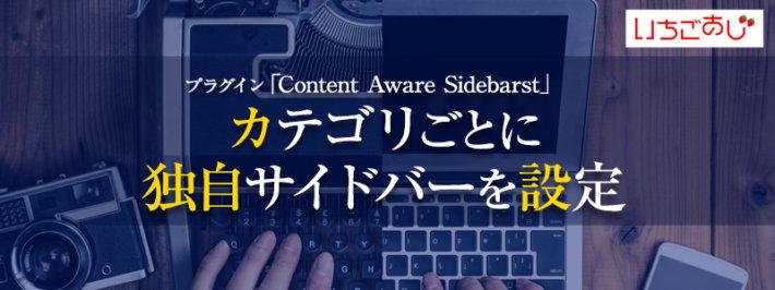 Content Aware Sidebarsのカバー