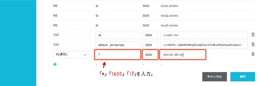 DNSのIP入力2